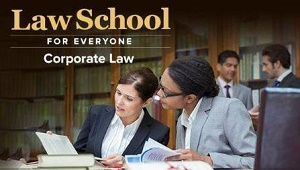 TTC Video视频] Law School for Everyone: Corporate Law